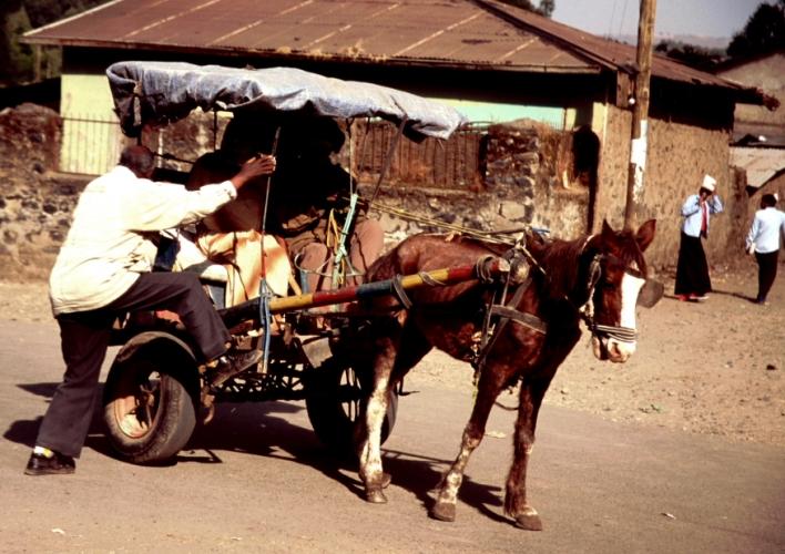 Ethiopia 020 - Gondar