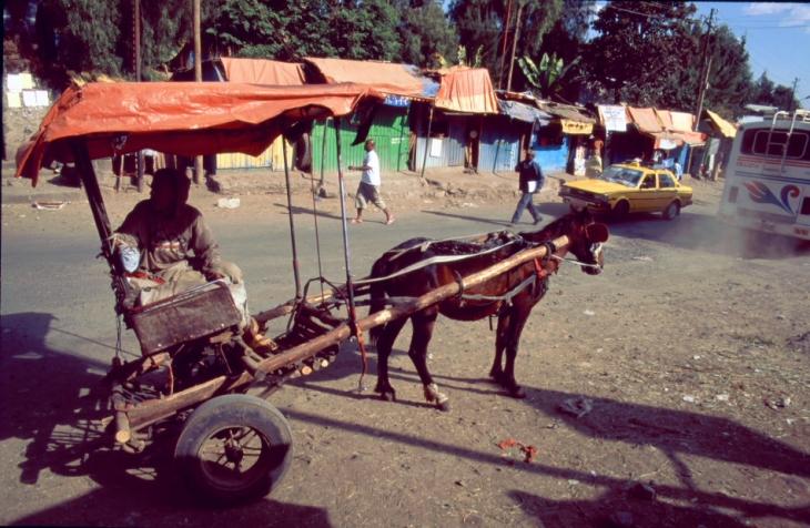 Ethiopia 026 - Gondar