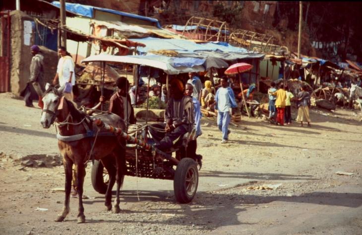 Ethiopia 030 - Gondar