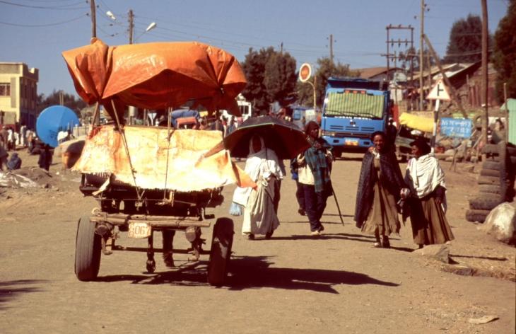 Ethiopia 089 - Debark