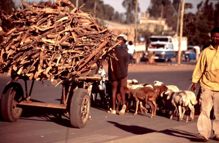 Ethiopia 065 - Bahir Dar