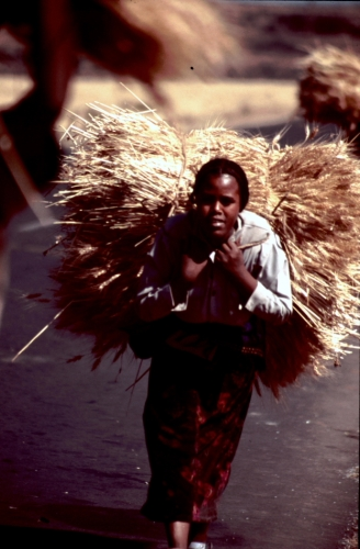 Ethiopia 005 - On the road to Bahir Dar
