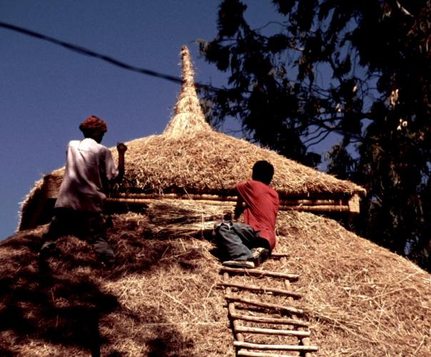 Ethiopia 078 - Lake Tana monasteries