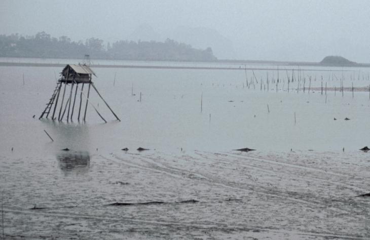 Vietnam - Baie d' Halong 096
