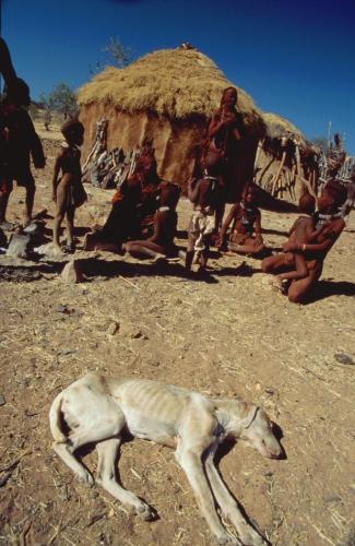 Namibia - Himba 008
