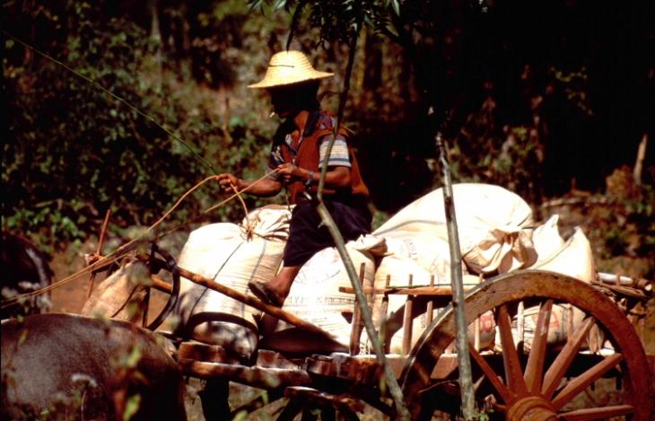 Myanmar - Inle 033