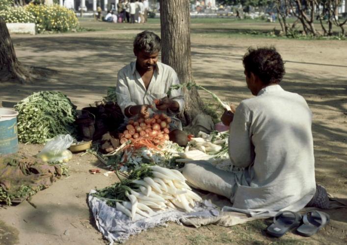 India - New Delhi 03