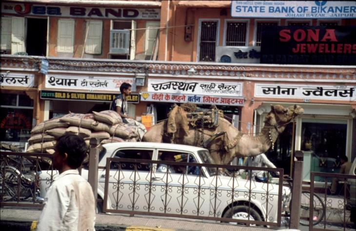 India - Jaipur 20