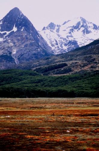 Argentina - Tierra Del Fuego 023
