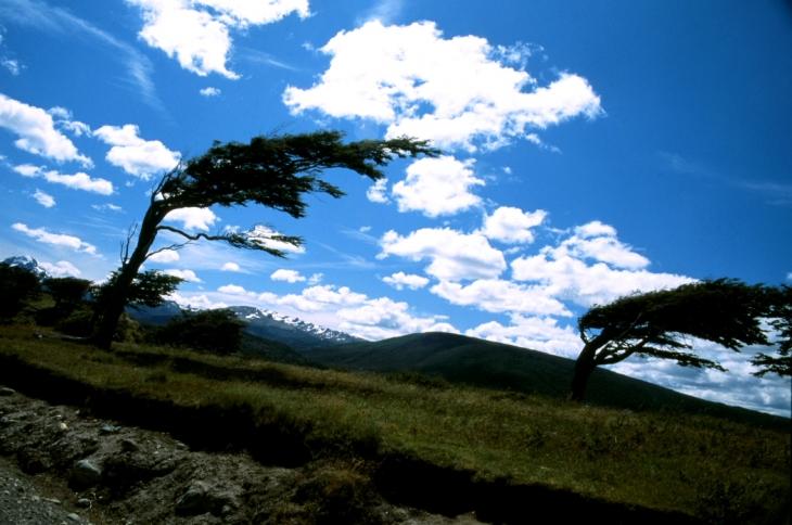 Argentina - Tierra Del Fuego 026