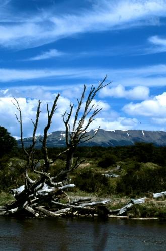 Argentina - Tierra Del Fuego 029