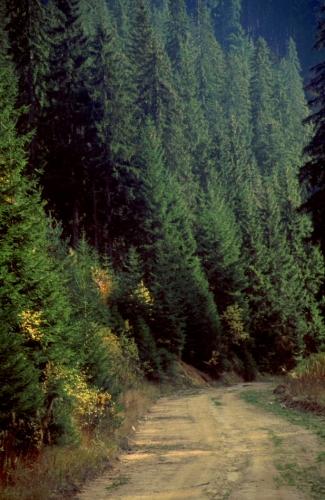 Greece - Autumn Sonata 32 - Karantere