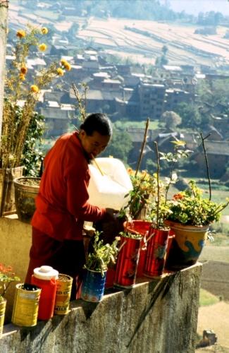 Nepal - Kathmandu Valley 10