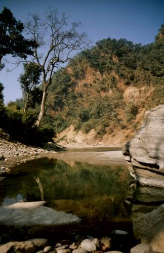 Nepal - Pokhara 10