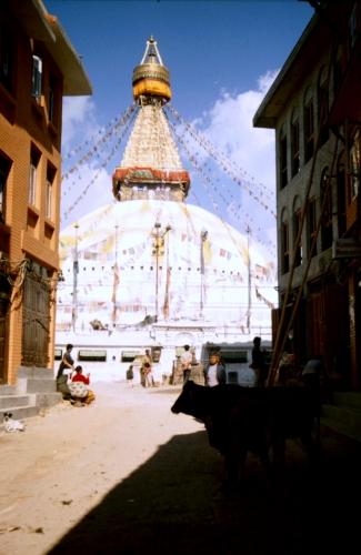 Nepal - Bodnath 06