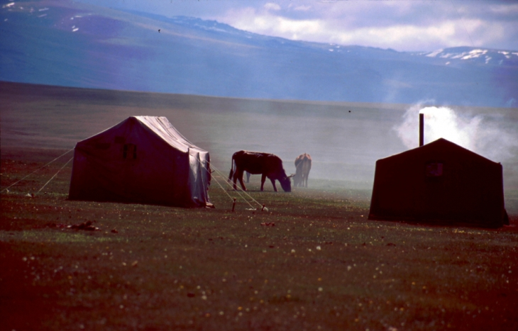 Kyrghystan - Son Kol 35