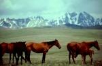 Kyrghystan first