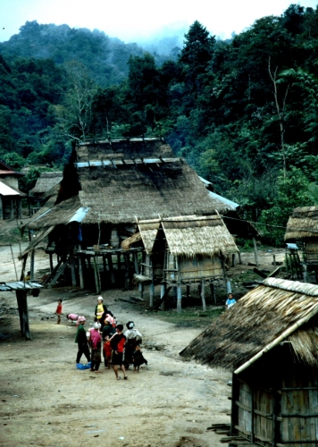 Laos - Golden Triangle 005