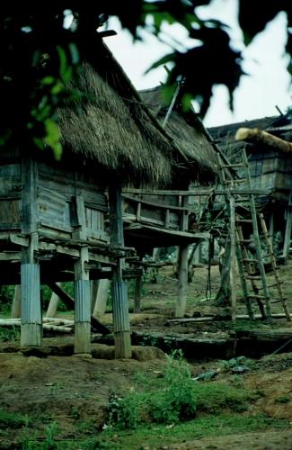 Laos - Golden Triangle 008