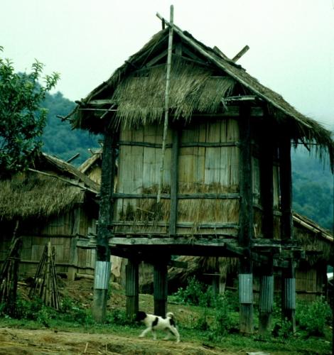 Laos - Golden Triangle 011