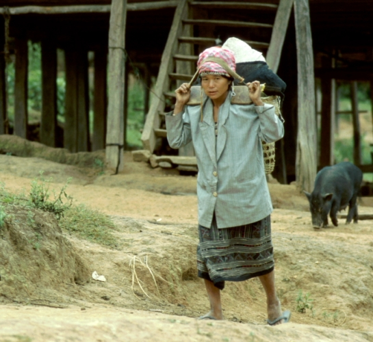 Laos - Golden Triangle 028