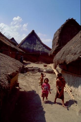 Indonesia - Lombok 042 - Sape