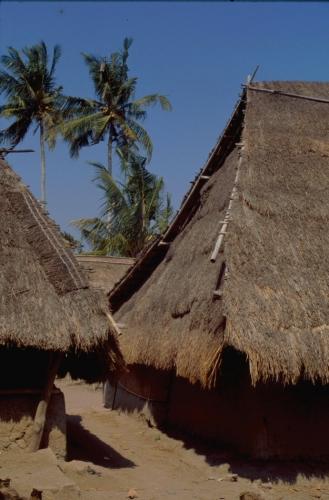 Indonesia - Lombok 044 - Sape