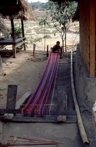 Indonesia - Lombok 048 - Sape