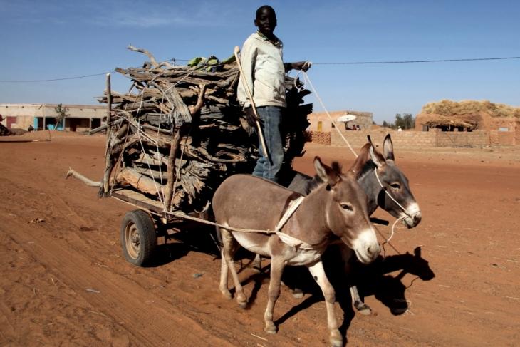 Mali - Trip on Niger river 001