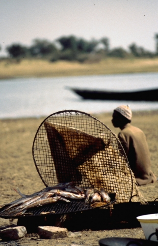 Mali - Trip on Niger river 005