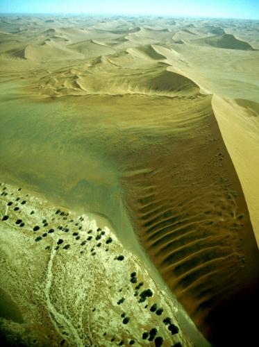 Namibia - Namib desert 009