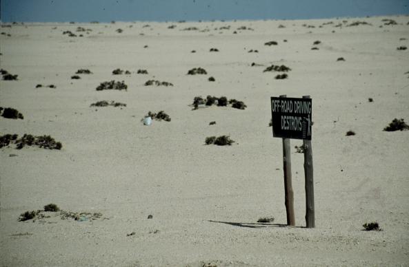 Namibia - Hentis Bay 014