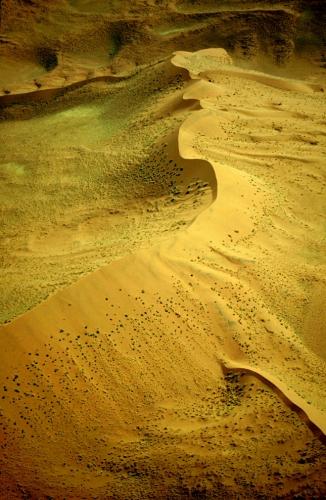 Namibia - Namib desert 014