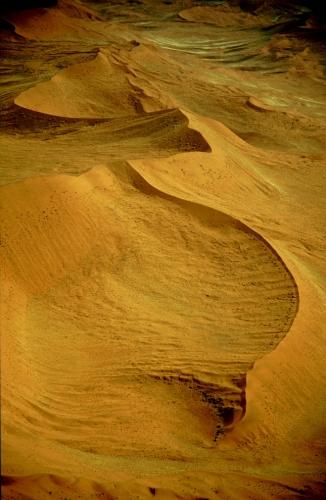 Namibia - Namib desert 015
