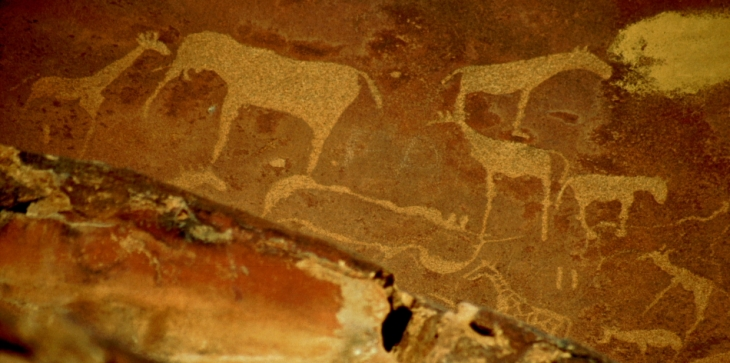 Namibia - Damaraland 019