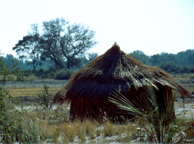 Botswana - Okavango Delta 011