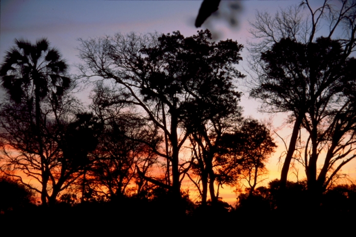 Botswana - Okavango Delta 034