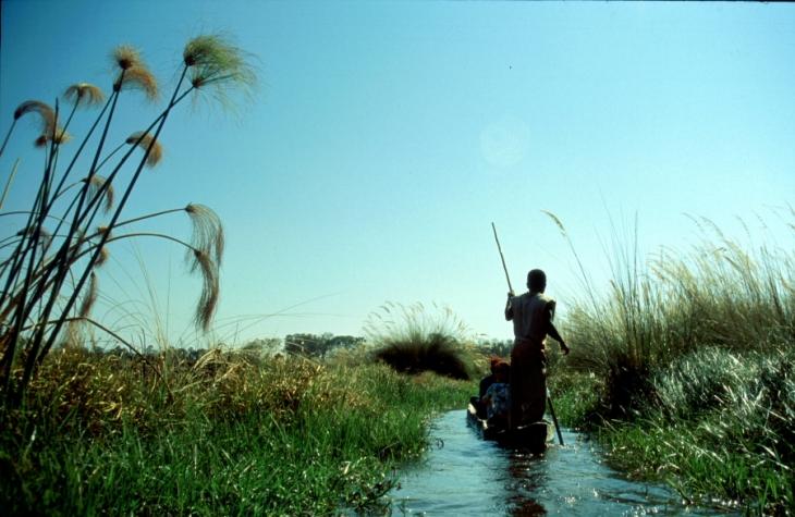 Botswana - Okavango Delta 041