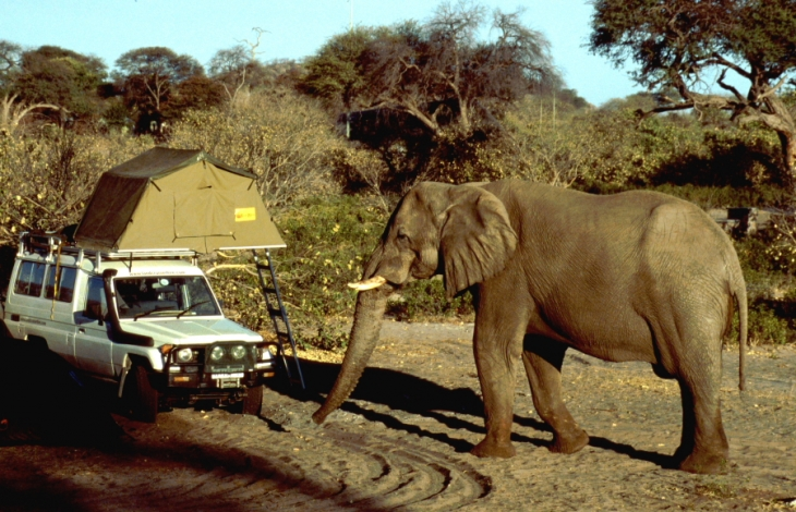 Botswana - Chobi & Moremi NP 039