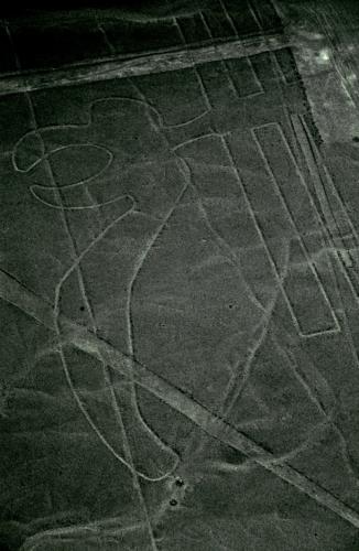 Peru 61 - Nazca