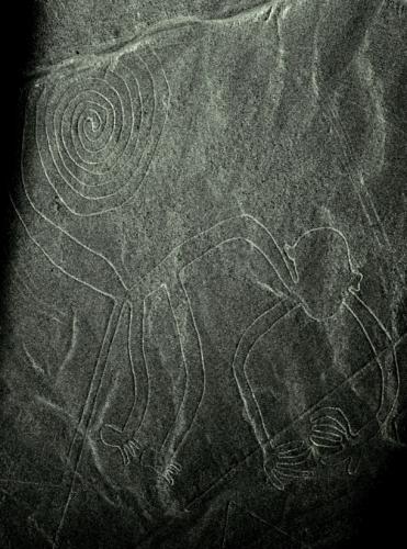 Peru 70 - Nazca