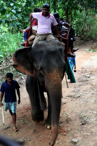 Sri Lanka 053 - Harabana