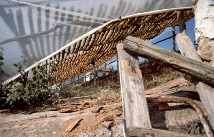 Greece - Pomaks area 057