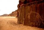 Algeria - Sahara 027