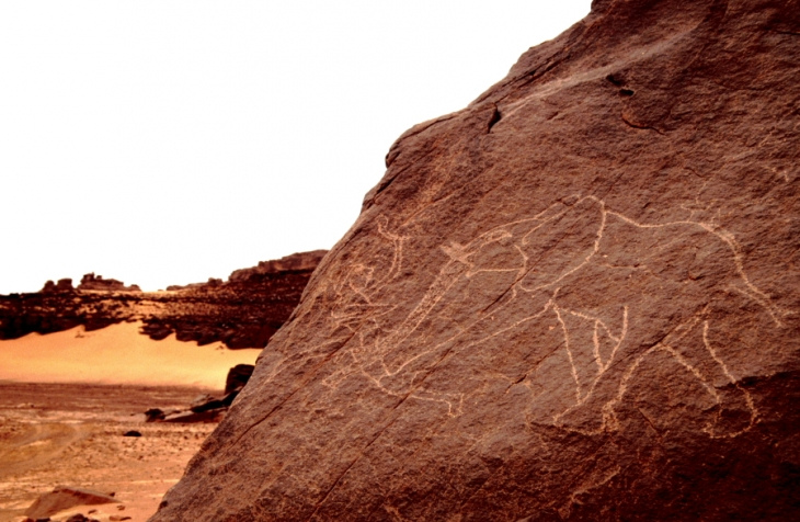 Algeria - Sahara 034
