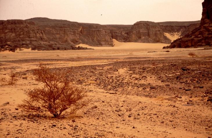 Algeria - Sahara 035