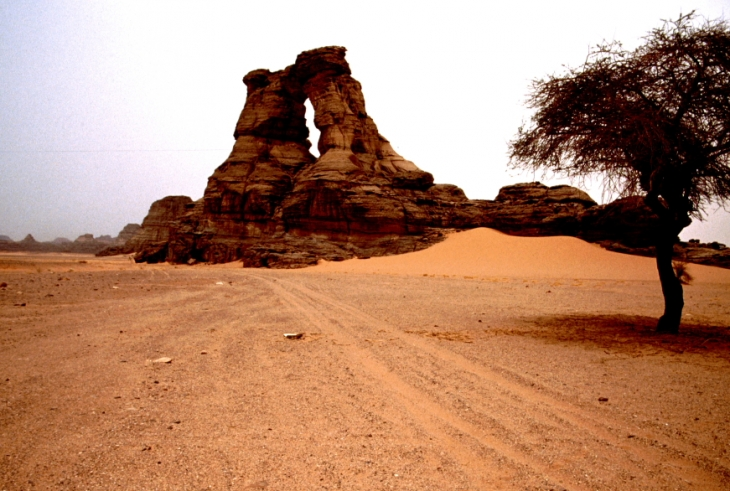 Algeria - Sahara 016