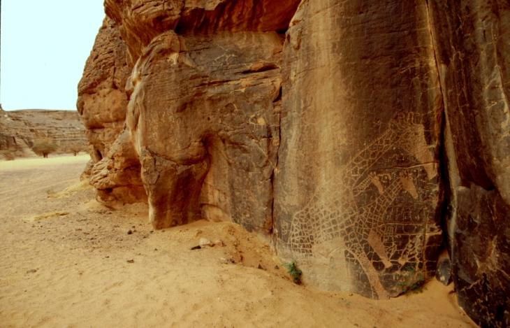 Algeria - Sahara 040