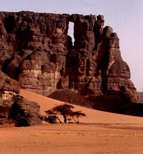 Algeria - Sahara 047