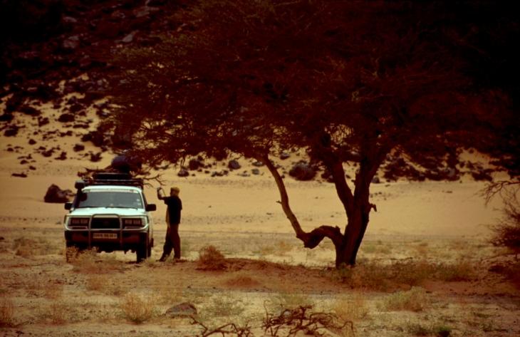 Algeria - Sahara 048